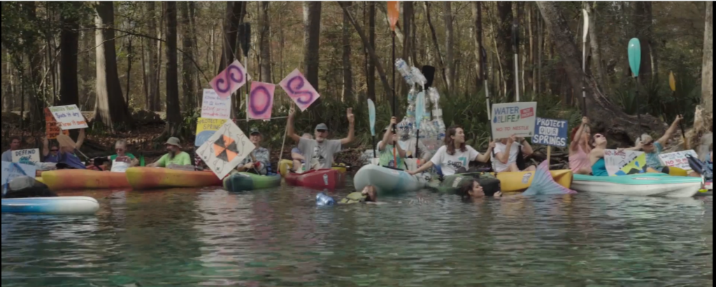 protestors for protecting Florida's springs